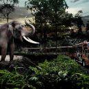 Chiang Mai Night Safari Zoo One-day Tour