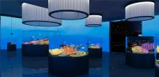 三鲨海洋世界-宿州