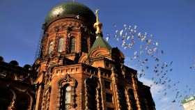 哈尔滨中央大街+关东古巷+圣索菲亚大教堂一日游【0购物0自费 东北虎林园 室内冰灯 一次尽享】