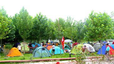 汽车营地 帐篷营区  (5)