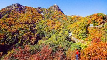 八仙山 (6)