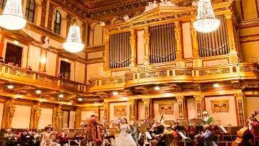 莫扎特音乐会 (11)