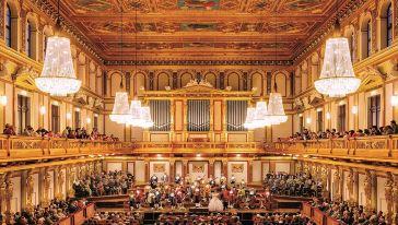 莫扎特音乐会 (12)