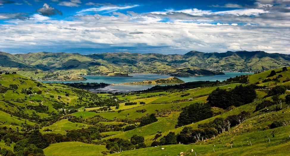 新西蘭基督城阿卡羅阿一日遊(可選海豚遊船&羊駝農場)