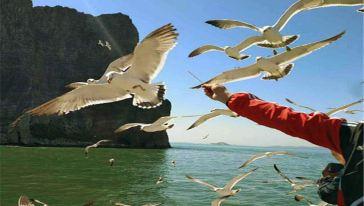 长岛海上游图片 (3)