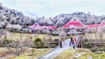 梅花山景区图片17