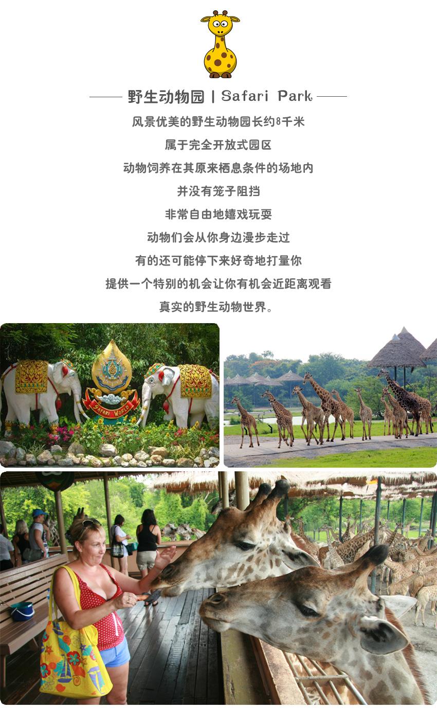 动物世界2