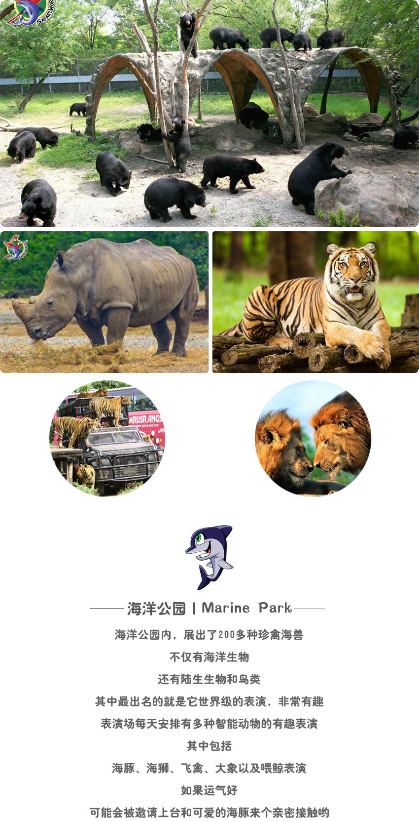 动物世界5