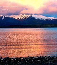 马尔堡大区游记图文-100% pure New Zealand——邂逅奇妙南半球