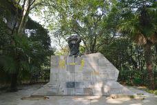 武汉大学-武汉-doris圈圈