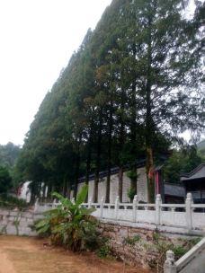 五祖寺-黄梅-龙野