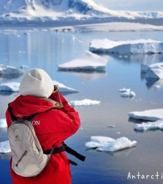 南极洲游记图文-这里的夏天有点冷