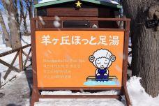 羊之丘展望台-札幌-zhangyu8