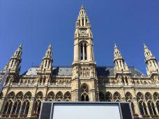 维也纳市政厅-维也纳-狄波