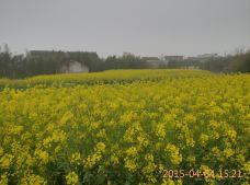 吕四风情区-启东-seashanghai
