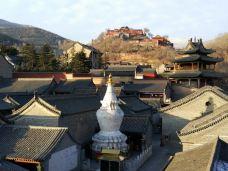 塔院寺-五台山-中北国际
