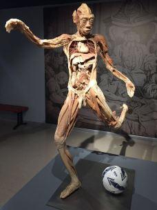 生命奥秘博物馆-周庄-138****3955