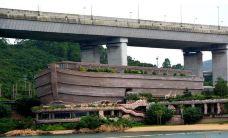 香港-蒙面大虾