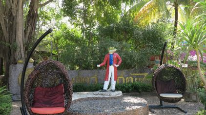 普吉岛动物园 (9)