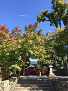 天龙寺-京都-288****066