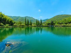奇洞竹海,绿色宜兴清凉2日游