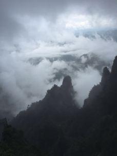 云阳国家森林公园-茶陵-_WeCh****23928