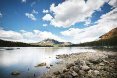 玛丽珍湖-奥兰多-doris圈圈