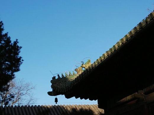 来自行走中国的女人的点评,行走中国的女人拍摄于undefined