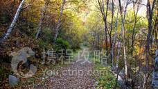 北京喇叭沟原始森林公园