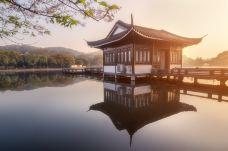 曲院风荷-杭州-doris圈圈