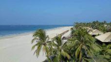 维桑海滩-仰光-夏树的卡夫卡