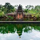 Tirta Empul Temple Tour/private tour