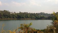 梅子湖公园