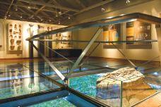 锡吉里耶博物馆-锡吉里耶-用户42931