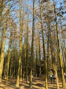 福州国家森林公园-福州-D16****54