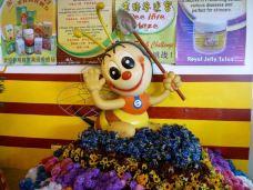 玉蜂谷养蜂园-金马仑高原-星小兔