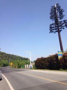 太湖渔港村-太湖-star9910