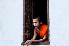 老挝-子丘