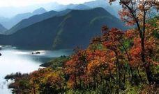 白鹤峡景区-泰顺-137****4573