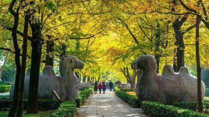 中山陵 (3)