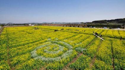 欢乐佳田农场7