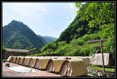 东拉山大峡谷-宝兴-远山近景杯红茶