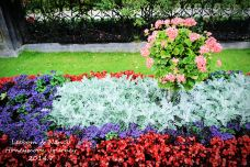 米拉贝尔宫殿和花园-萨尔茨堡-nancy_zcn