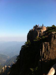 狮子峰-黄山风景区-岸林风