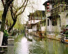 15 (1)-西塘风景区-西塘-赖宝小乖