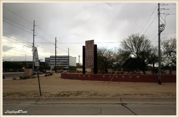 美洲 美利坚合众国 亚利桑那州 菲尼克斯市 - 西部落叶 - 西部落叶