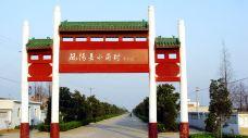 小岗村-凤阳-E02****43