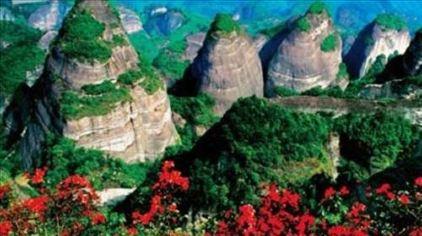 湖南岳阳五尖山森林公园5