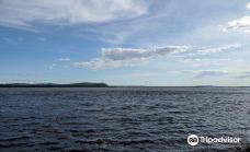 Amur Embankment-阿穆尔河畔共青城