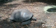 Zoo Nationale d'Abidjan-阿比让